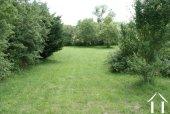 <en>Lawn area of garden</en>