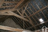 Attic & Roof Beams