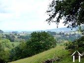 Vue du jardin sur les collines boisées