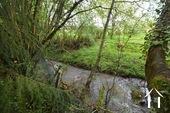 petit rivier au fond de le jardin