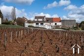 Excellente qualité et vue sur les vignes
