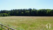 View on land 17.000m2